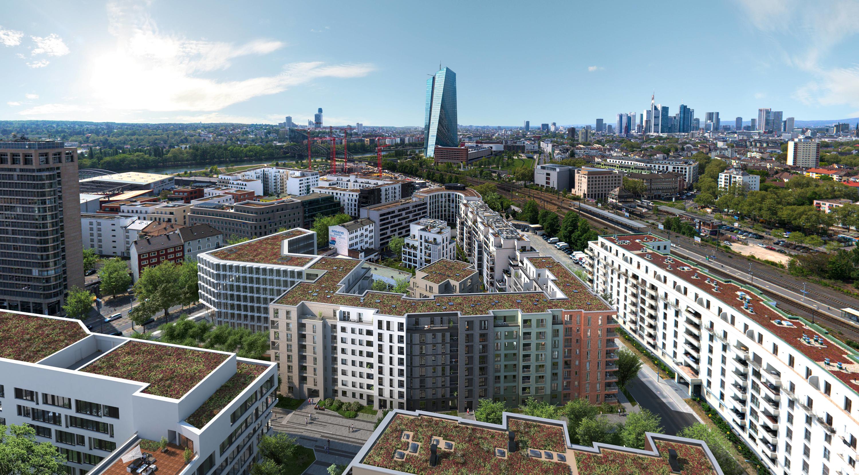 Mvv Frankfurt